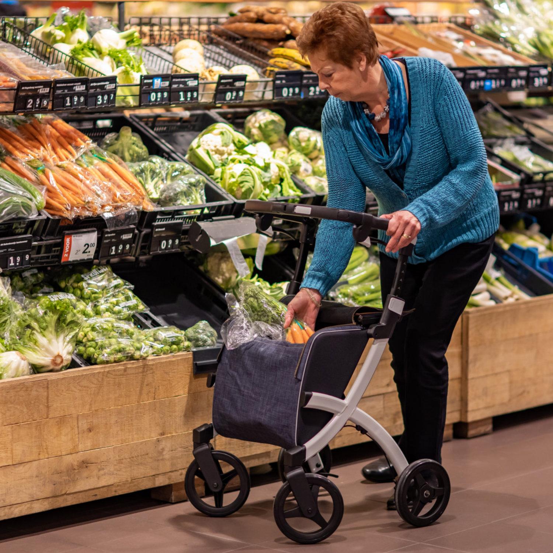 Einkaufen gehen Rollz Flex